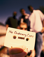 No Ordinary Cats (NOC)