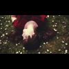 Video - Black Wind