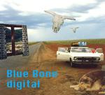 Blue Bone Digital