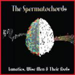 The Spermatochords