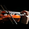 Video - The Butterfly Ballet in C# minor