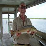fisherbrewer