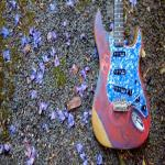 bluecountry1976.com