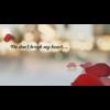 Video - Don't Break My Heart