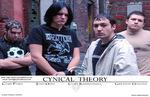 Cynical Theory