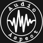 Audio Aspect