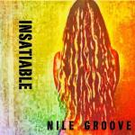 Nile Groove