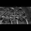 Video - Skeletons