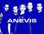 Anevis