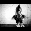 Video - Flip Flop
