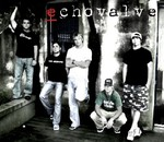 Echovalve