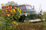 Cruising Latin Style by Sunflower Truck