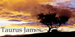 Taurus James