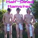 Half-Dead Hamster
