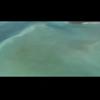 Video - magic carpet ride