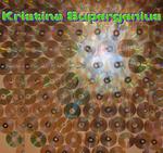 Kristina Supergenius