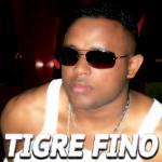 Tigre Fino